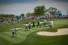DUBLIN, OH, UNITED STATES - May 29, 2013: Tiger Woods Walking on Golf Green