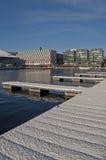 dublin snöig vinter Fotografering för Bildbyråer