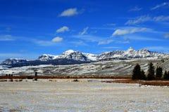 Dubois Wyoming Halny Uprawia ziemię widok zbierający Alfalfa pole przed Absaroka pasmem górskim zdjęcie royalty free