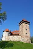 Dubovac Castle, Croatia Royalty Free Stock Photos