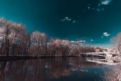 ` Dubovka ` парка Стоковая Фотография