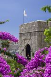 Dubrovnik, Κροατία, πλάγια όψη της πύλης ` PloÄ  ε ` με την άνθιση bougainvillea στοκ φωτογραφίες με δικαίωμα ελεύθερης χρήσης