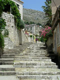 Dubrovnik. Old street of Dubrovnik with lot of flowers goes upstairs stock photo