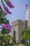 Dubrovnik, Chorwacja, boczny widok bramy ` PloÄ  e ` z bougainvillea kwitnieniem Obrazy Stock