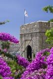 Dubrovnik, Croácia, ideia lateral do ` do  e de PloÄ do ` da porta com florescência da buganvília fotos de stock royalty free
