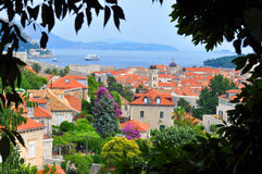 Dubrovnik, Croatia - Old Town. The view through the leaves on top Royalty Free Stock Images