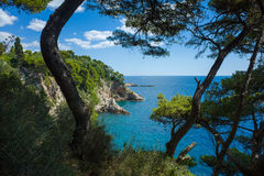 Dubrovnik Kroatië Stock Foto