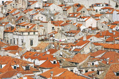 Dubrovnik old town. View to the Dubrovnik old town, Croatia Stock Photography