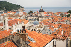 Dubrovnikdaken Stock Fotografie