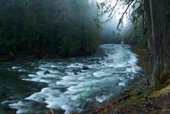 duc有雾的河场面sol 免版税库存图片