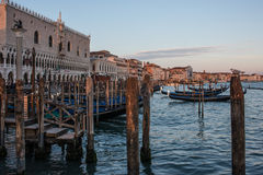 Ducal palace and riva degli schiavoni venice veneto italy europe. View of the ducal palace and riva  degli schiavoni in venice with gondolas ferme Stock Image
