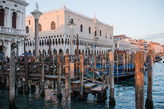 Ducal palace venice veneto italy europe. View of the ducal palace in venice from the shore Stock Photos