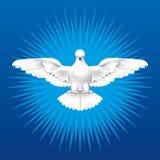 duch święty Fotografia Stock