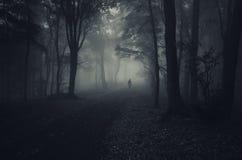 Duch w ciemnym lesie z mgłą na Halloween Zdjęcie Royalty Free