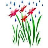 Ducha en arte de la flor Fotografía de archivo libre de regalías