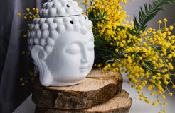 Duchowa obrządkowa medytaci twarz Buddha na drewnie, domowy wystrój, mimozy żółta wiosna kwitnie Fotografia Stock