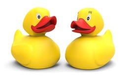 duck резина Стоковое фото RF