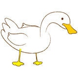 Duck. A  illustration of a cartoon duck with white background Stock Photography