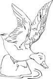 Duck. Illustration on the floating duck stock illustration