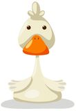 Duck. Illustration of isolated cartoon duck on white background royalty free illustration