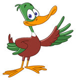 Duck. Cartoon duck presenting with his wing vector illustration