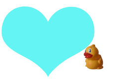 Duck. Blue Space For Massage stock photography
