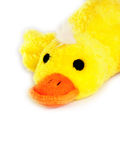 Duck. On white Royalty Free Stock Photo