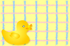 Duck Background royalty free stock photo