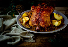 The duck baked with sauerkraut. Royalty Free Stock Image