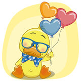Duck with balloons Royalty Free Stock Photos