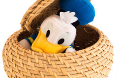 Duck in the basket Royalty Free Stock Photo