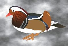 Duck 3. Beautiful colorful duck on grey background stock illustration