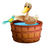A duck and a bird at the bathtub with water. Illustration of a duck and a bird at the bathtub with water on a white background Stock Photos