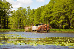 Duck Blind Royalty Free Stock Photo