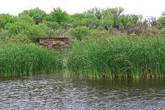 Duck Blind in Las Lagunas DE Anza Wetlands Stock Afbeelding