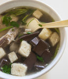 Duck blood and bean-starchy vermicelli soup Stock Photography