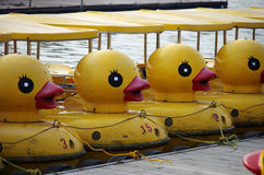The duck boat. The famous yellow duck, very lovely Royalty Free Stock Photos