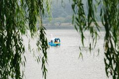 Duck boat on lake beyond green tree leaves Royalty Free Stock Photo
