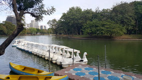 Duck boat on lake in Suan Lumpini park famous public park in Ban Royalty Free Stock Photo