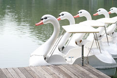 Duck boat Royalty Free Stock Images