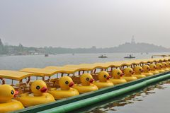 Duck boats in Beihai Park in Beiing. Beihai is a large park in central Beijing, People's Republic of China's capital. Beihai originally formed part of the stock photos