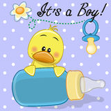 Duck boy Stock Photography