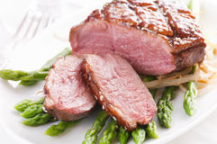 Free Duck Breast Stock Photography - 19894652
