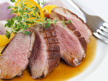 Duck Breast Arkivbilder
