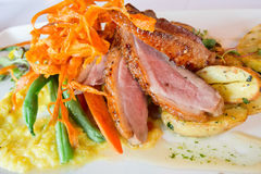 Duck Breast Dinner royalty free stock photo
