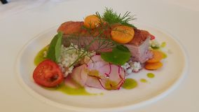 Duck Breast Dish arkivfoto