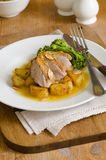 Duck breast fillets Stock Images