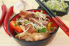 Duck breast with fried noodles Royalty Free Stock Photos