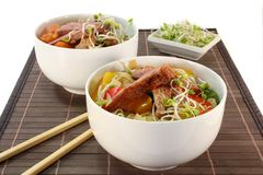 Duck breast with fried noodles Stock Photography