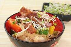 Duck breast with fried noodles Royalty Free Stock Photography